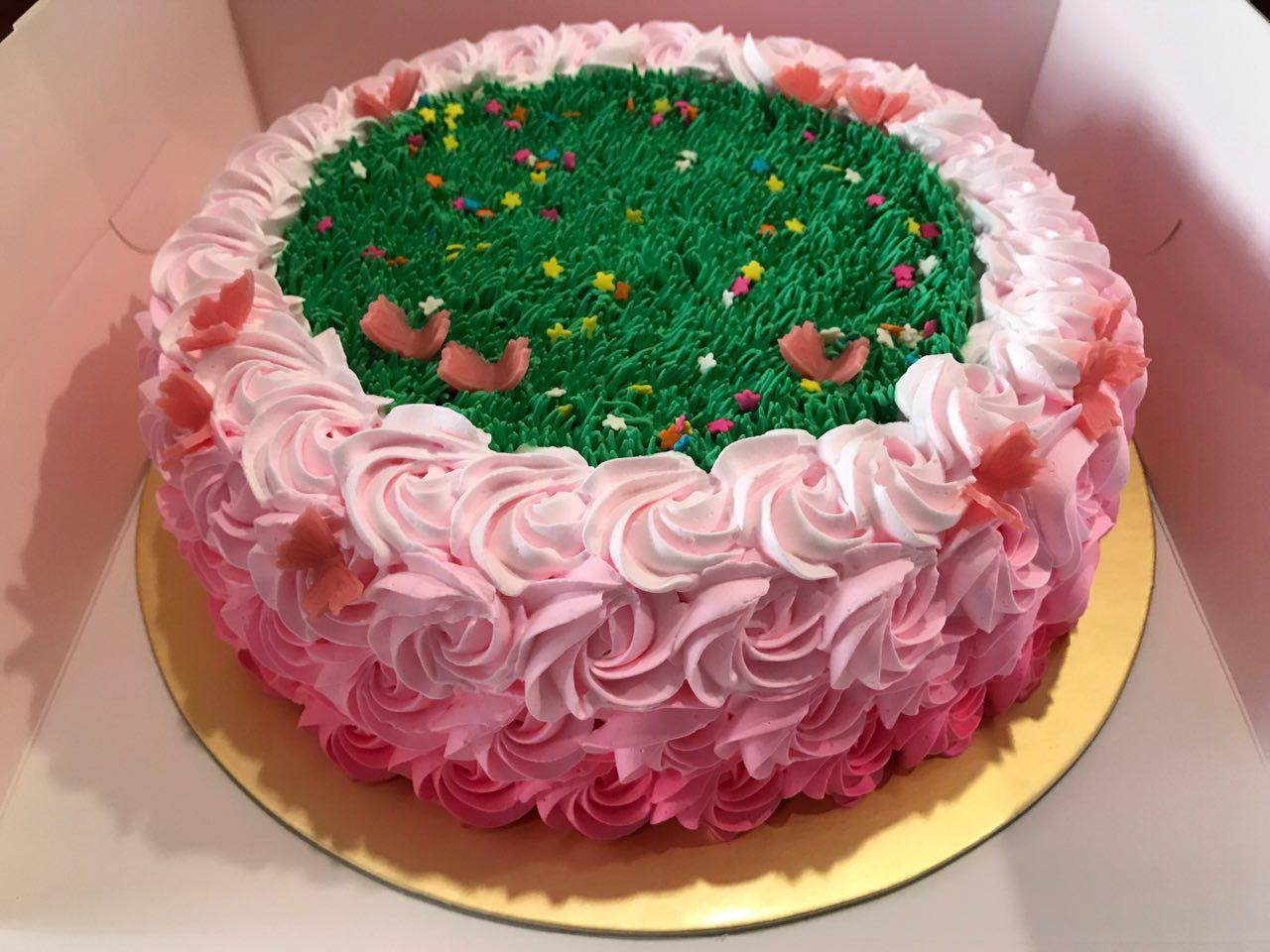 Ombre Pink Rosette Butterflies